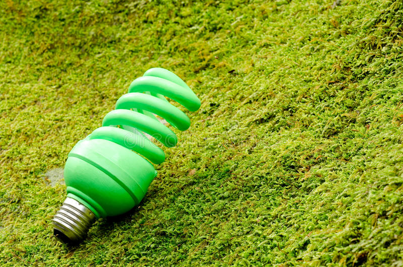 Green spiral light bulb royalty free stock image