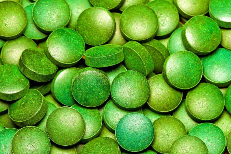 Green Spirulina royalty free stock image