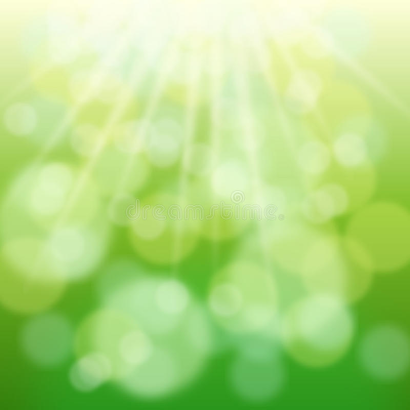 Green spring bokeh and sun. Green bokeh and sun beams in spring day. Natual blurred background