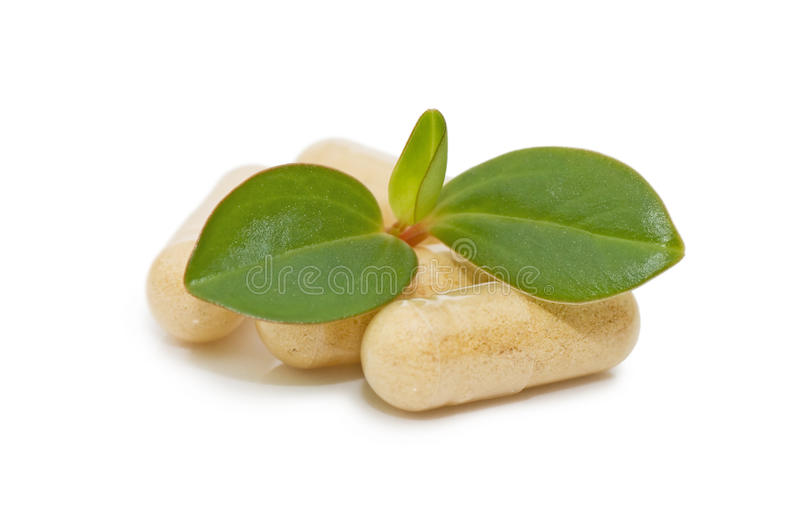 Green sprout from pills royalty free stock photo