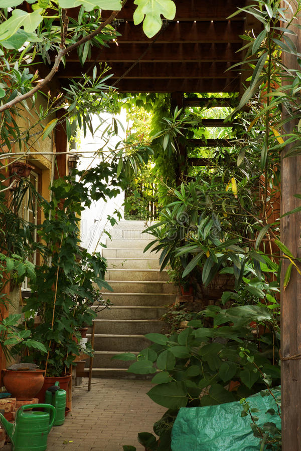 Green stairway to a private house stock image