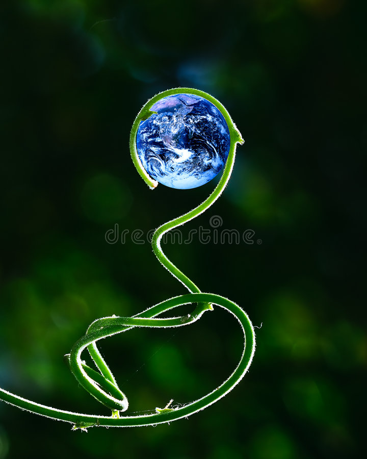 Green stalk and Earth. Green stalk growing in circle, holding planet Earth (Earth image courtesy of NASA - Blue Marble, mission Apollo 17 royalty free stock images