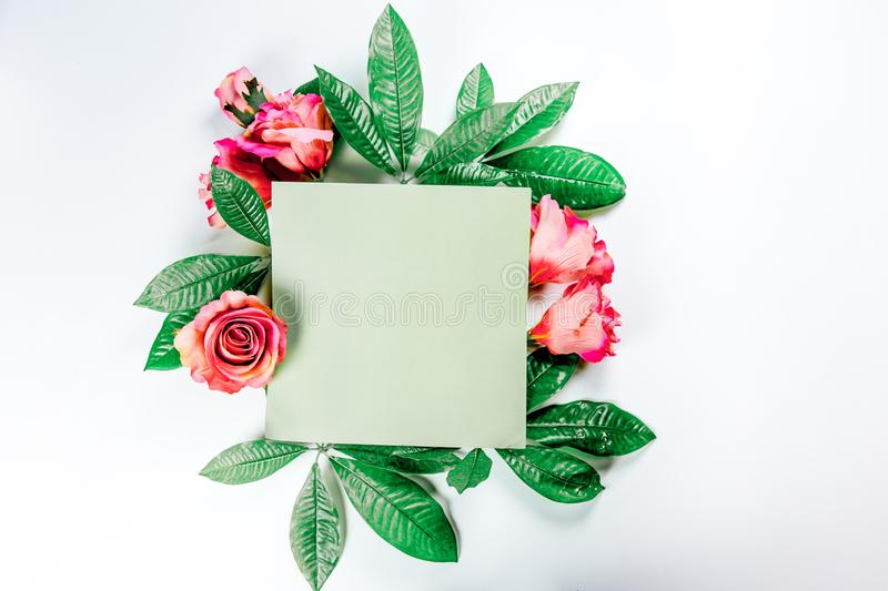 Green sticky note with green plant leaves. On a white background stock photography
