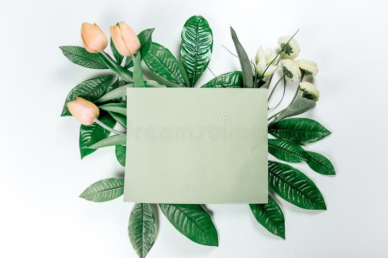 Green sticky note with green plant leaves. On a white background royalty free stock photography