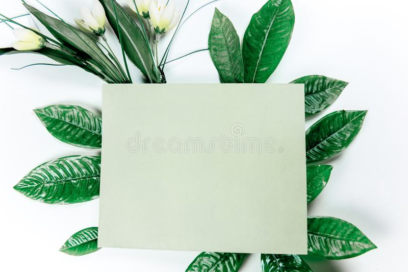 Green sticky note with green plant leaves. On a white background royalty free stock photo