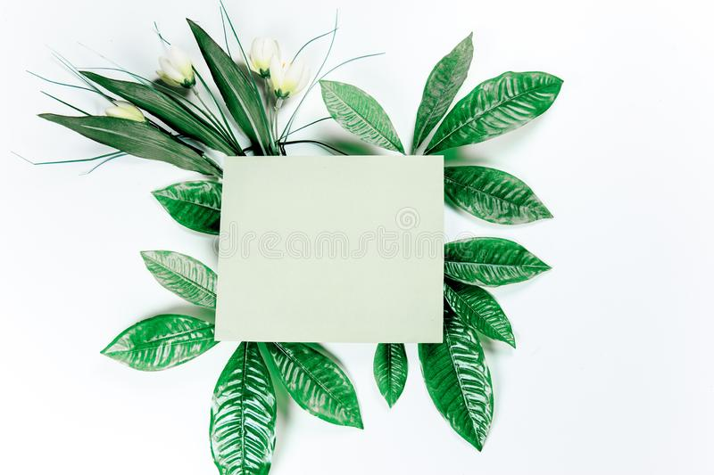 Green sticky note with green plant leaves. On a white background royalty free stock image