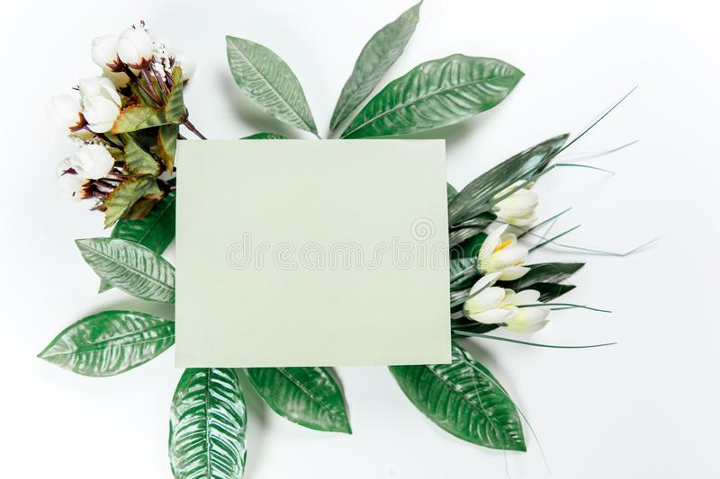 Green sticky note with green plant leaves. On a white background stock images