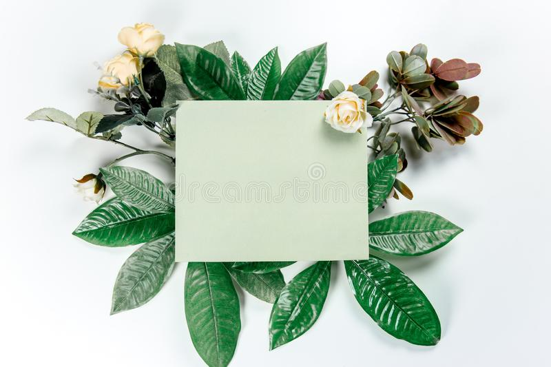 Green sticky note with green plant leaves. On a white background stock photos