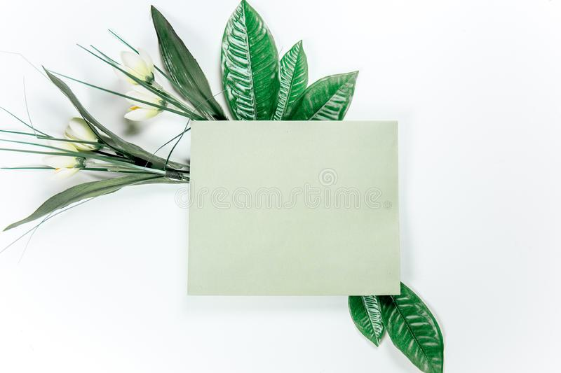 Green sticky note with green plant leaves. On a white background royalty free stock photos