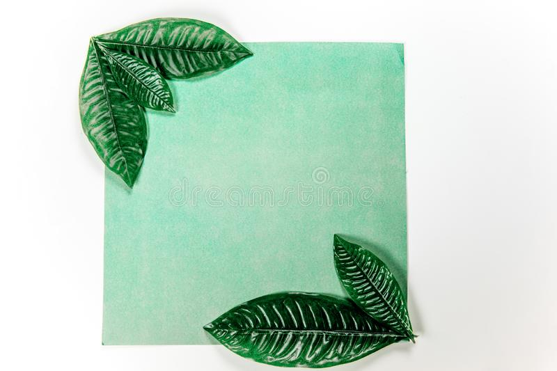 Green sticky note with green plant leaves. On a white background royalty free stock images