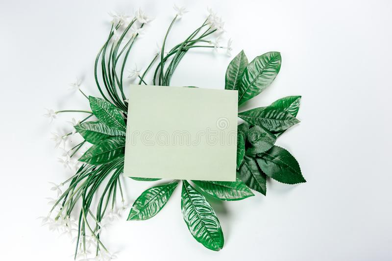 Green sticky note with green plant leaves. On a white background stock photo