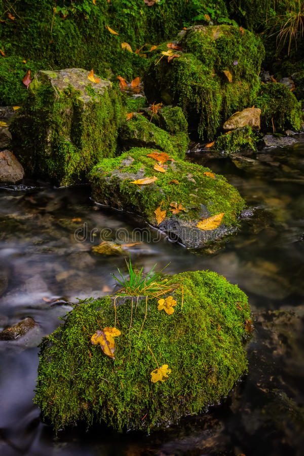 Green stones stock photography