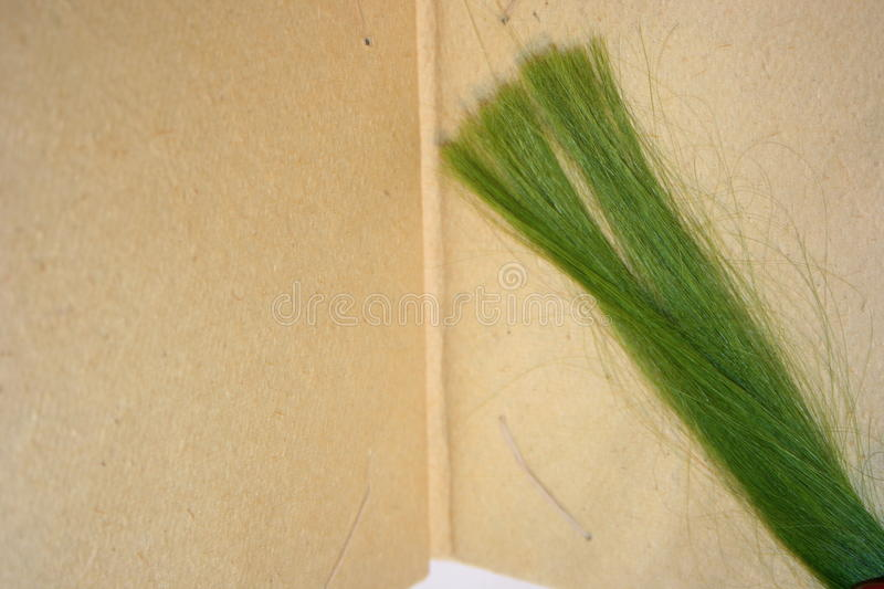 Green strands of hair stock photo