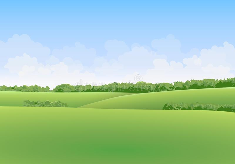 Green summer vector landscape with meadows and trees in the background with clouds in blue sky royalty free illustration