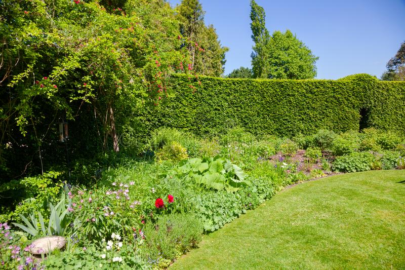 Green summer walled english garden Southern England UK stock images