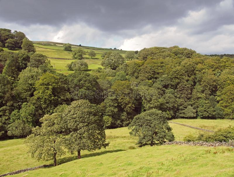 Green sunlit landscape with hillside fields along a tree covered valley with grey clouds in the elphin valley between cragg vale stock photo