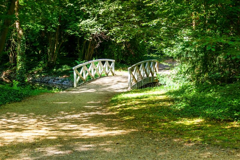 Green Sunny forest with old wooden bridge royalty free stock photography