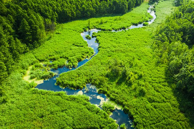 Green swamps and small winding river, view from above. Europe stock photo