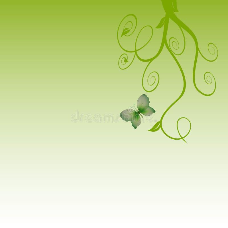 Green swirls butterfly background royalty free illustration