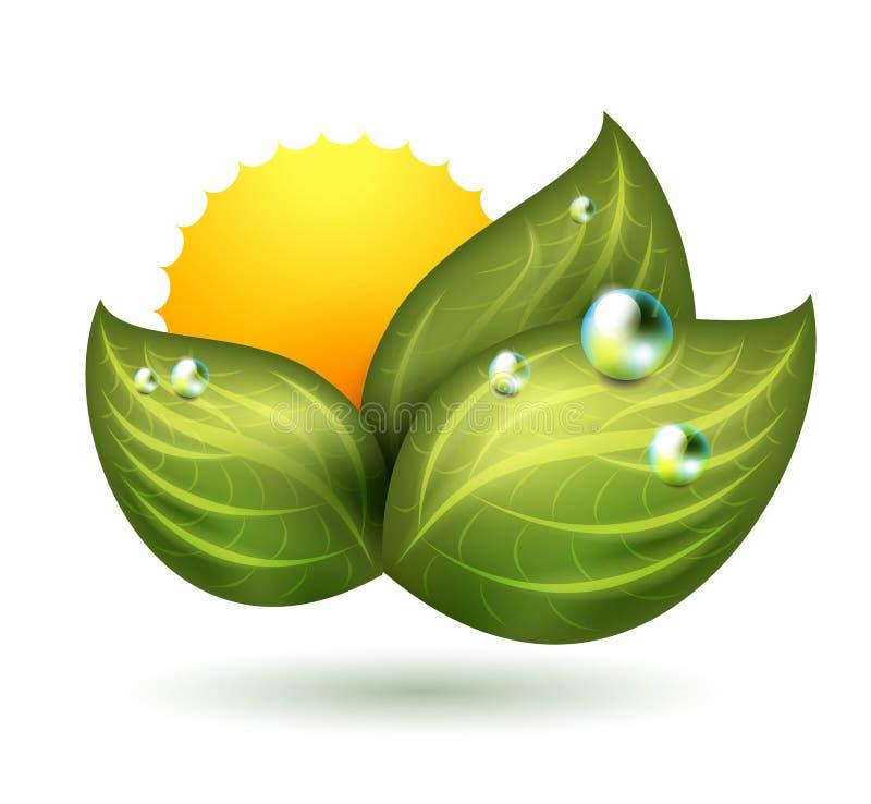 Green symbol vector illustration