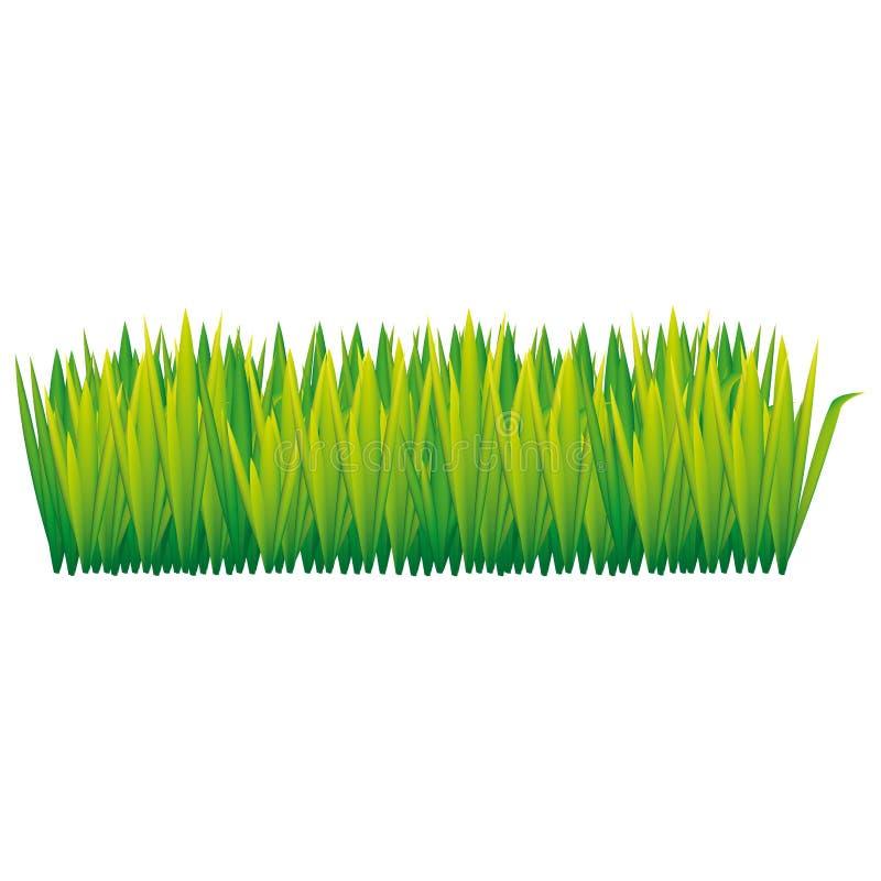 Green tall grass icon. Illustraction design image stock illustration
