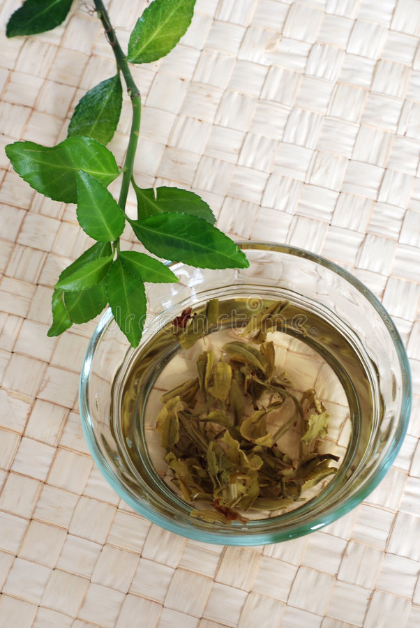 Green Tea. Drink and leaves royalty free stock photos