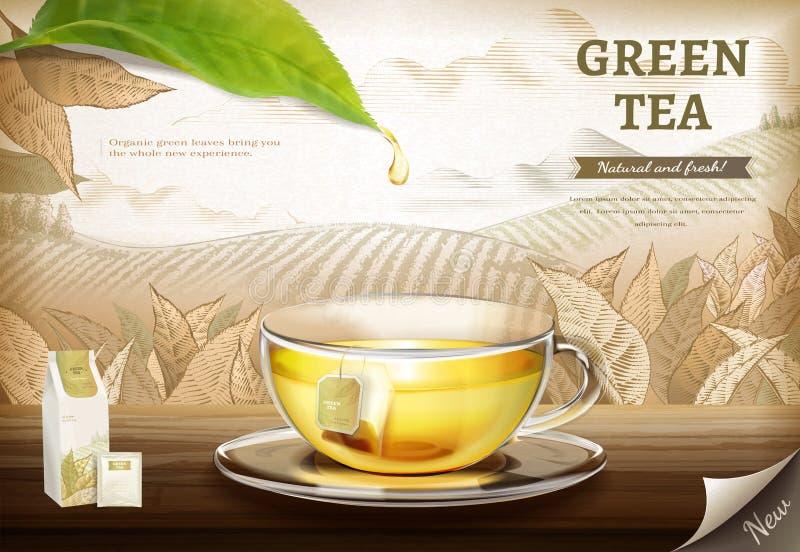 Green tea bag ads vector illustration