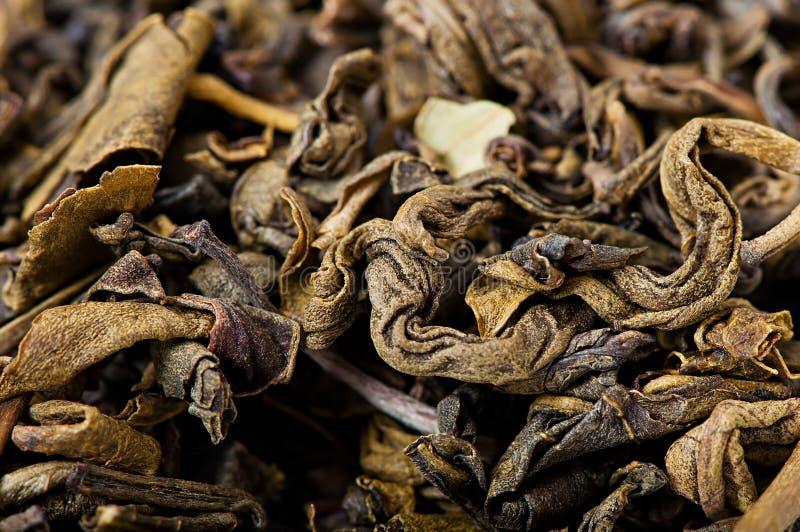 Green tea, dried tea leaves. Green tea, dried tea leaves, diet food stock image