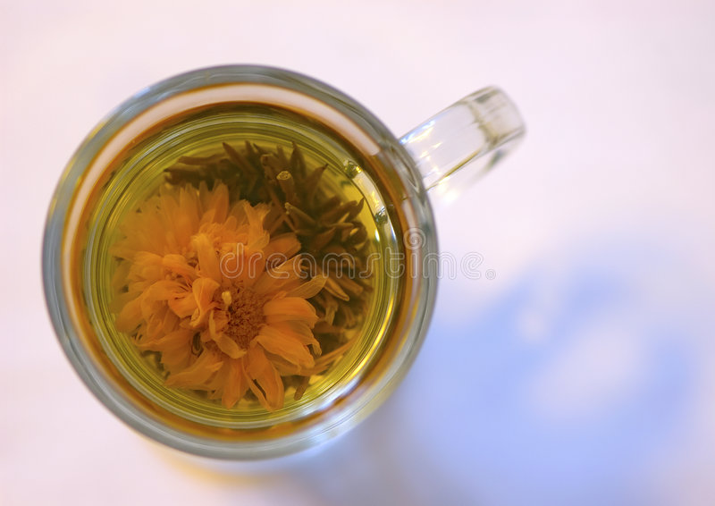 Green tea flower royalty free stock photography