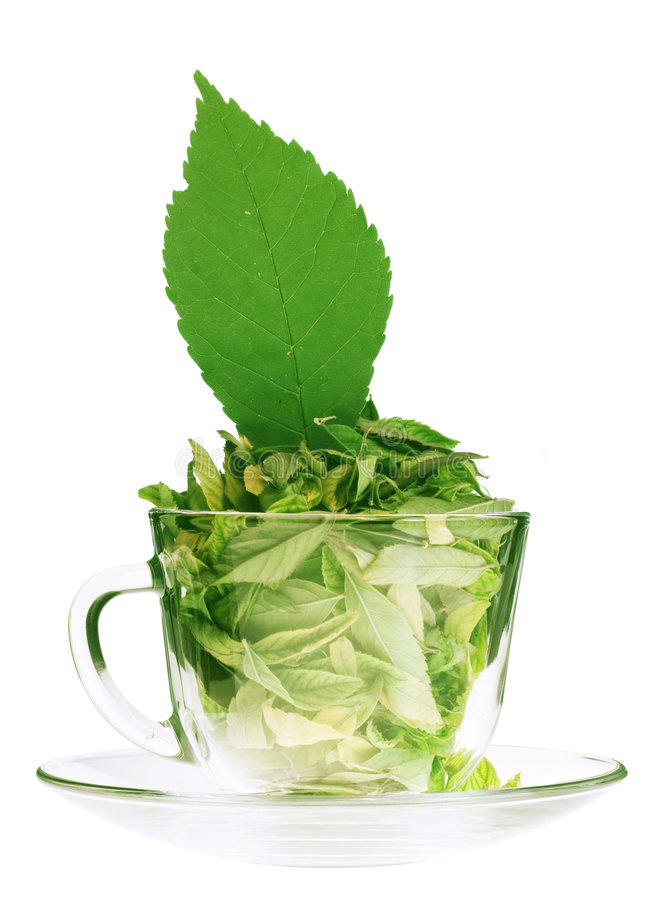 Free Green Tea Freshness Royalty Free Stock Image - 6113676