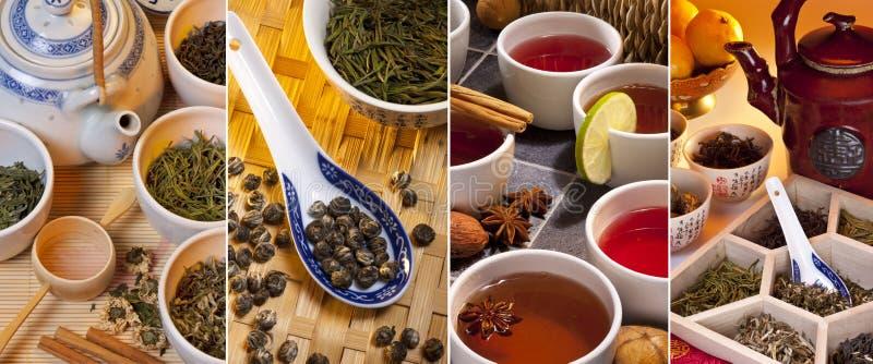Green Tea - Herbal Tea stock photos