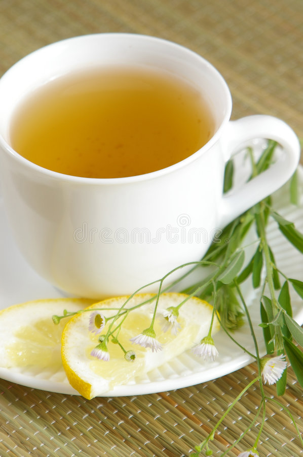 Download Green Tea with Herbs stock image. Image of table, healthy - 1291105