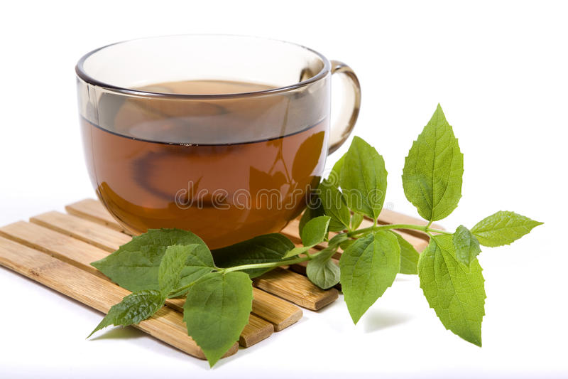 Green tea with a jasmin stock images