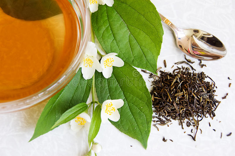 Green tea and jasmine royalty free stock images
