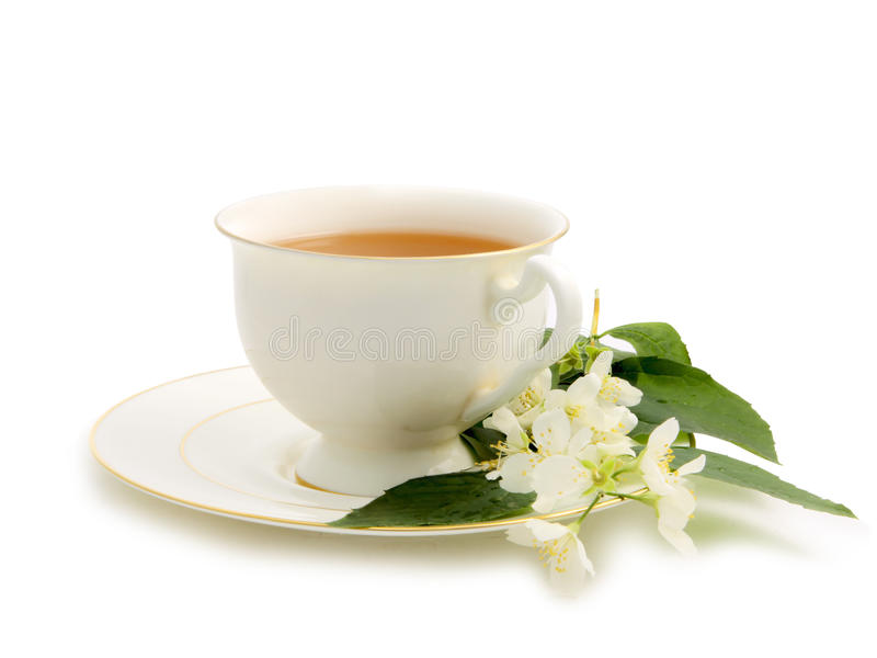 Download Green Tea With Jasmine Stock Photography - Image: 19932612
