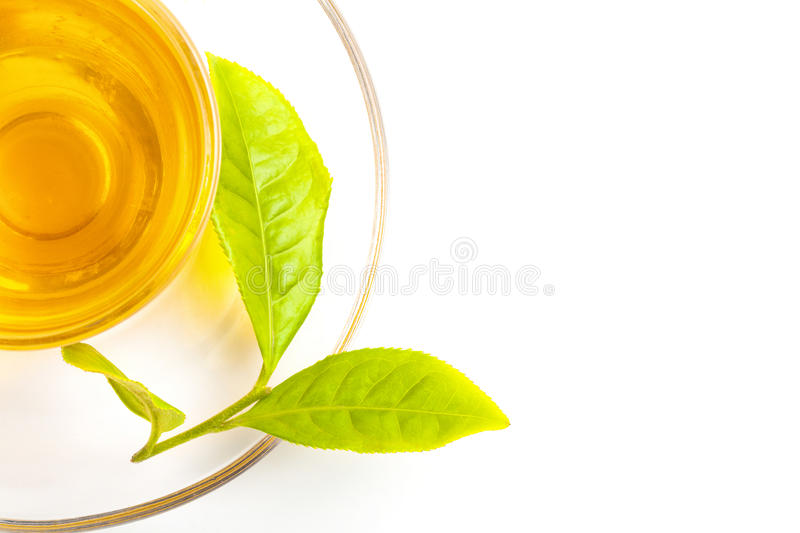 Green tea leaf and glass cup of black tea stock image