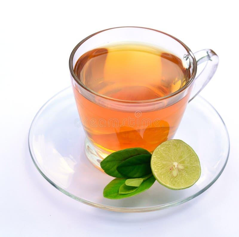 Green tea with lemon. Isolated of green tea with lemon stock photos
