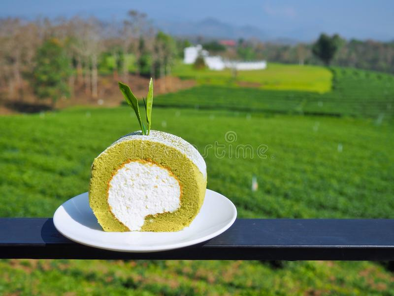 Green tea roll cake with white cream and decor with green tea leaves at top of cake. royalty free stock photography