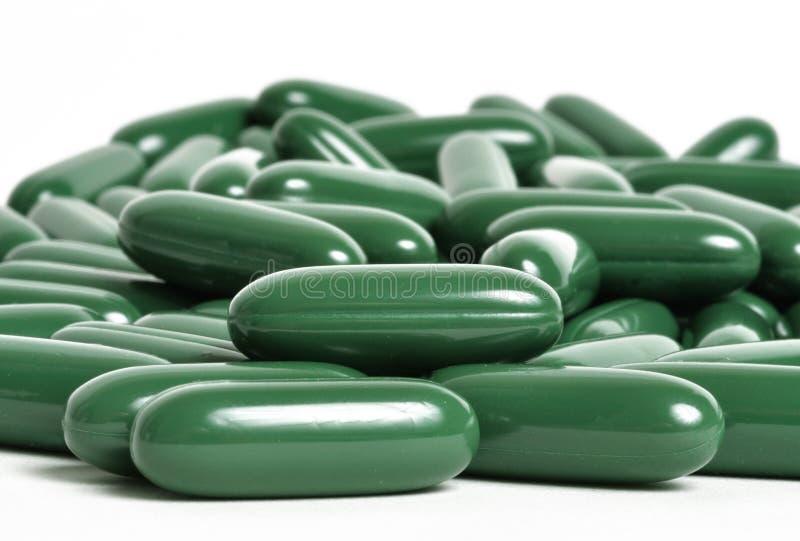 Green tea supplements stock image