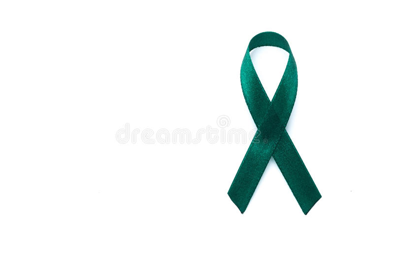 Green Teal Bow Ribbon On White Background Mitochondrial Disease