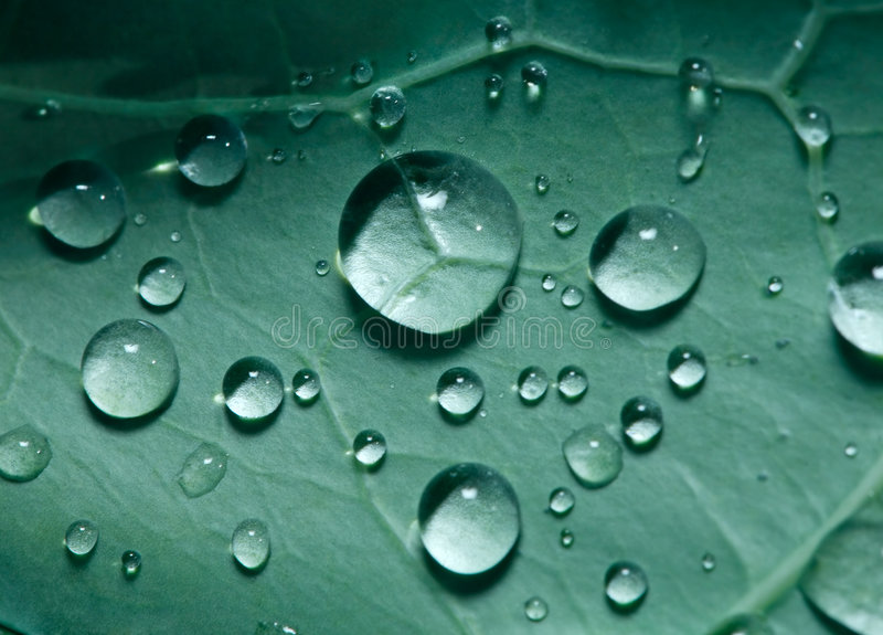 Green tears stock photo
