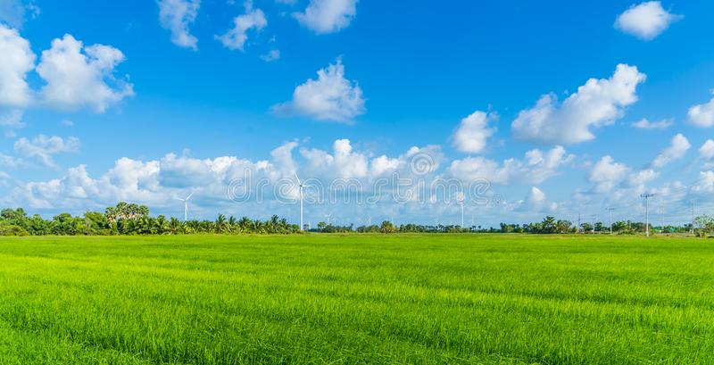 Green technology concept. Wind generators in field at Hua Sai District,  Nakhon Si Thammarat Province, Thailand.  royalty free stock photos