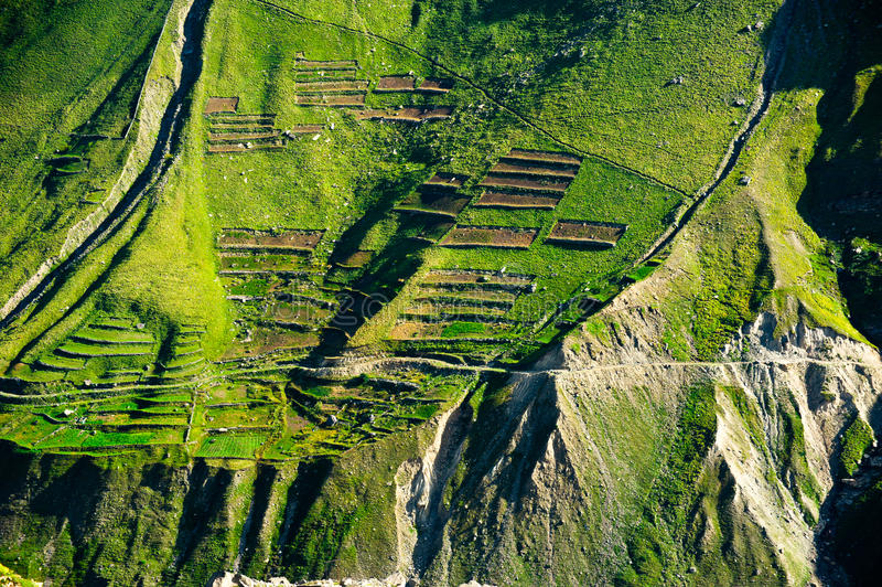 Green terrace texture of Himalaya mountains. India stock photography