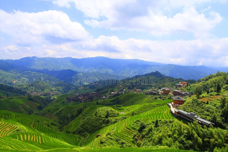 Green terraced fields, terrace along mountains. With blue sky and white cloud background in sunny day. Photo was taken in Guizhou, China stock image