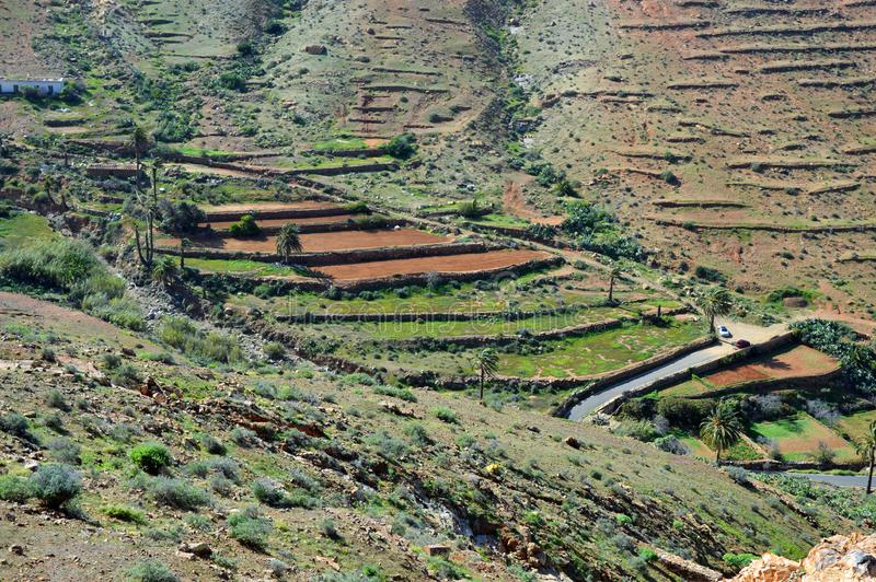 Green terraces maintaining water stock images