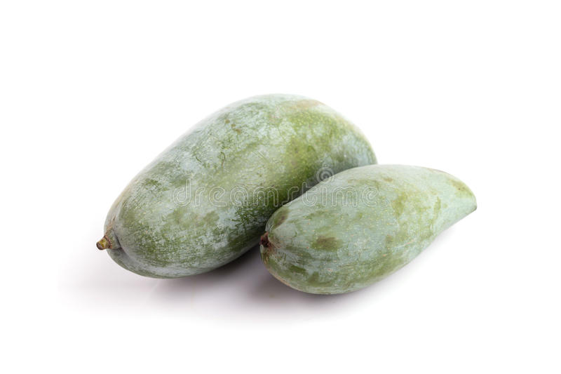 Green Thai mango isolated on white background stock photography