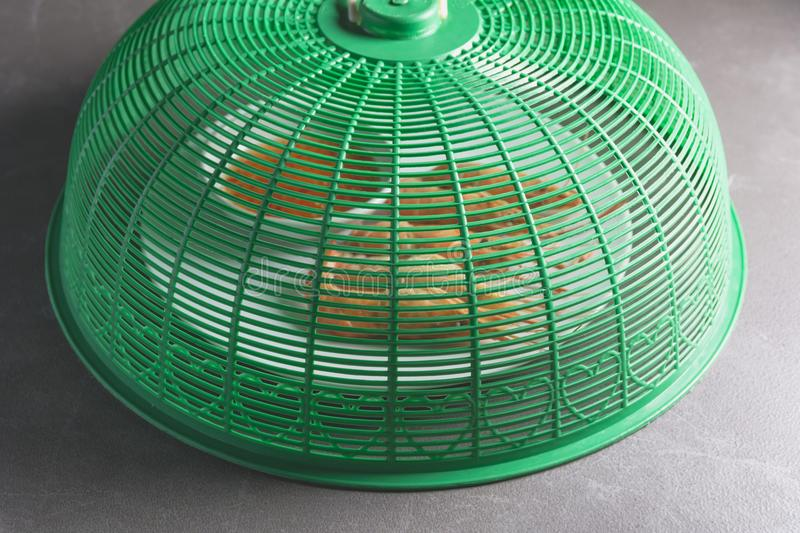Green Thai style food cover made from plastic for protect insect stock photo