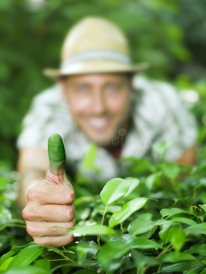 Green thumb. Farmer shows his green thumb stock photo