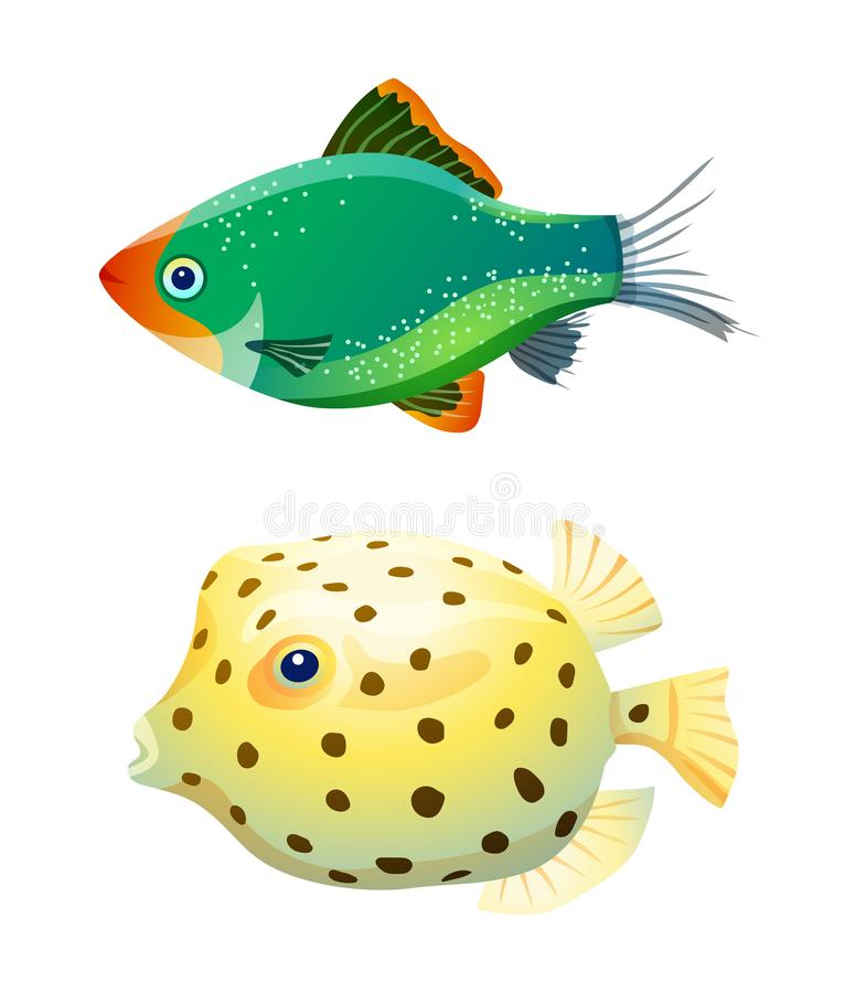 Green tiger barb and boxfish isolated on white. Fresh and saltwater aquarium pets silhouette on blank background in cartoon style vector illustration stock illustration