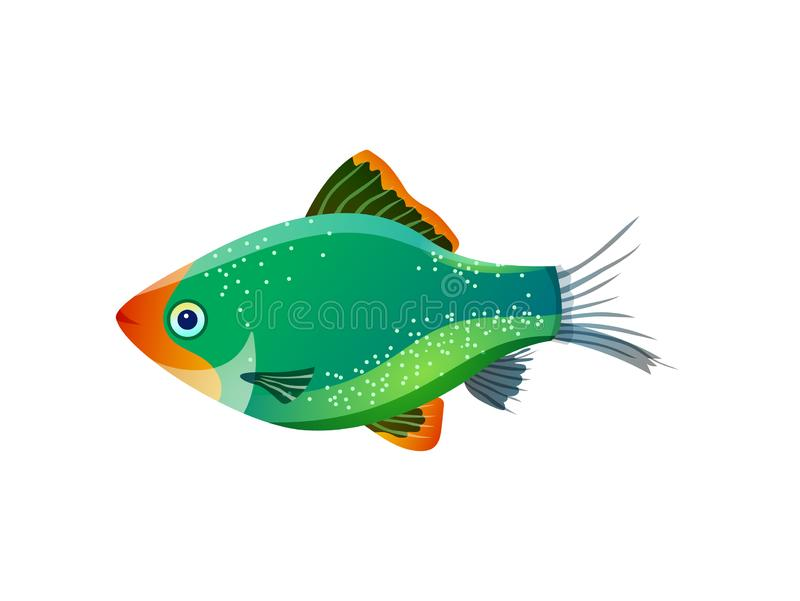 Green Tiger Barb Ocean Inhabitant Colorful Poster. Vector illustration of glossy marine fish with pied body and transparent tail isolated on white royalty free illustration
